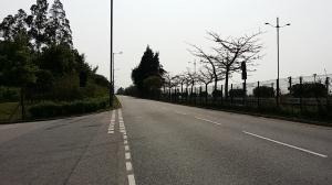 大嶼山の道路