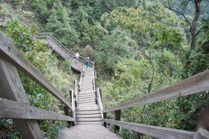 岩場には木の道が設置されています。